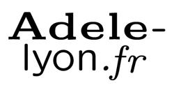 Adele, réseau d'art contemporain Lyon + Métropole